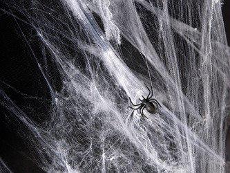 Sztuczna pajęczyna biała 60g x 40op. PH60-008/karton40